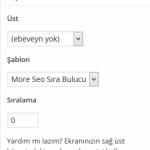 Sıra bulucu page template