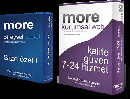 web tasarım bireysel paket